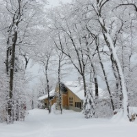 Winter at Stratton Brook Hut, photo by John Orcutt