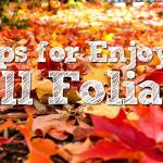 5 Tips for Enjoying the Fall Foliage