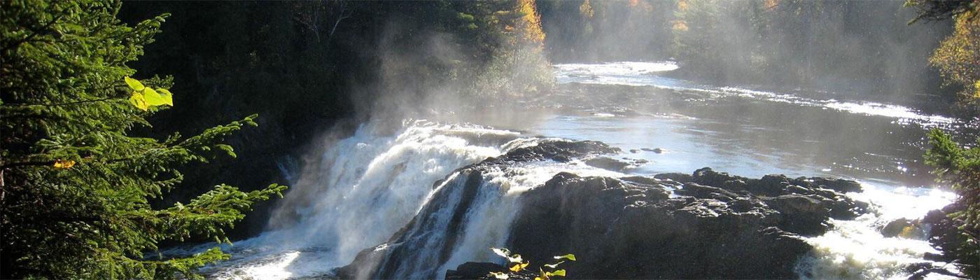 Grand Falls foliage