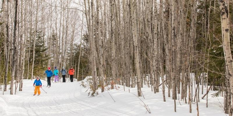 Skiing at Maine Huts & Trails