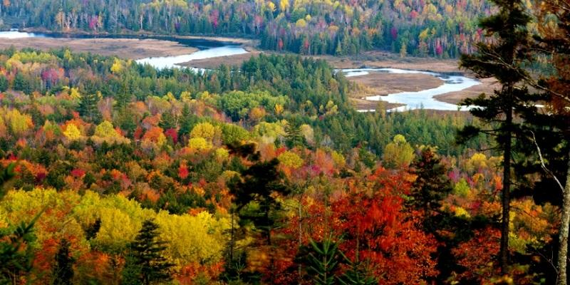 Fall foliage in western Maine