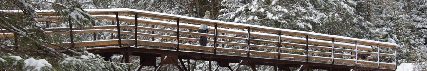 Crossing a bridge in winter